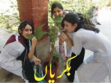 college Girls funny Pictures