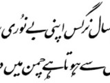 Iqbal poetry for muslims all over the world
