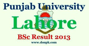 Online Punjab University BSc Result 2013