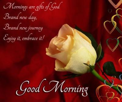 love Good morning English SMS 2013