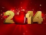 Exquisite New Year 2014 Wallpapers and Backgrounds (2)