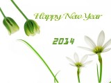 Happy new year 2014 for love