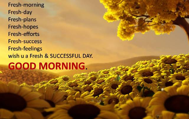 Good Morning SMS Messages - Good Morning SMS Quotes