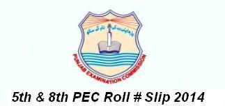 PEC 5th & 8th Class Roll Number Slip 2014