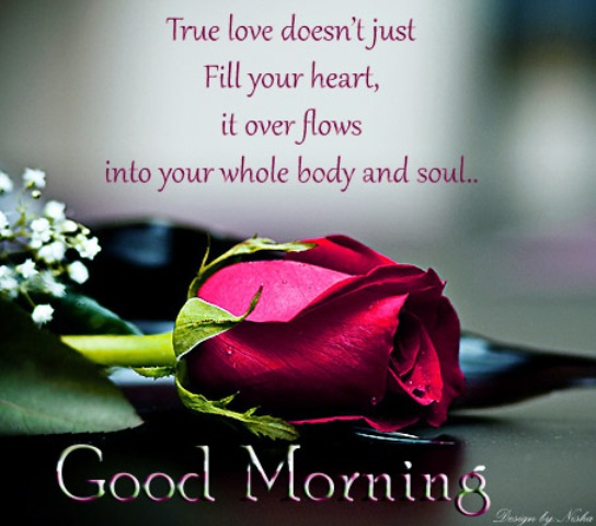 Love Good Morning Wish Wallpaper : Love Quotes on Good Morning