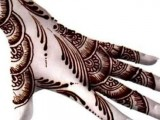 Latest & Beautiful Pakistani Mehndi Designs 2014