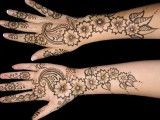 Mehndi Designs 2014 For Hands and Arms