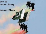 happy defence day 2014