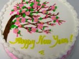 Christmas/Happy New Year Cakes