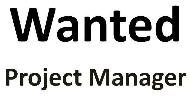 Project manager in construction mega project