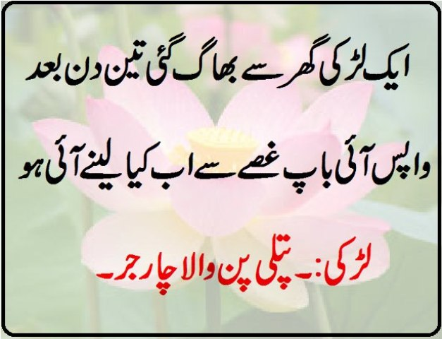 Funny Wallpapers Pictures in Urdu