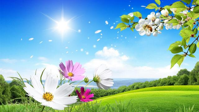 Nature Wallpapers Hd Free Download Beautiful For Desktop Love