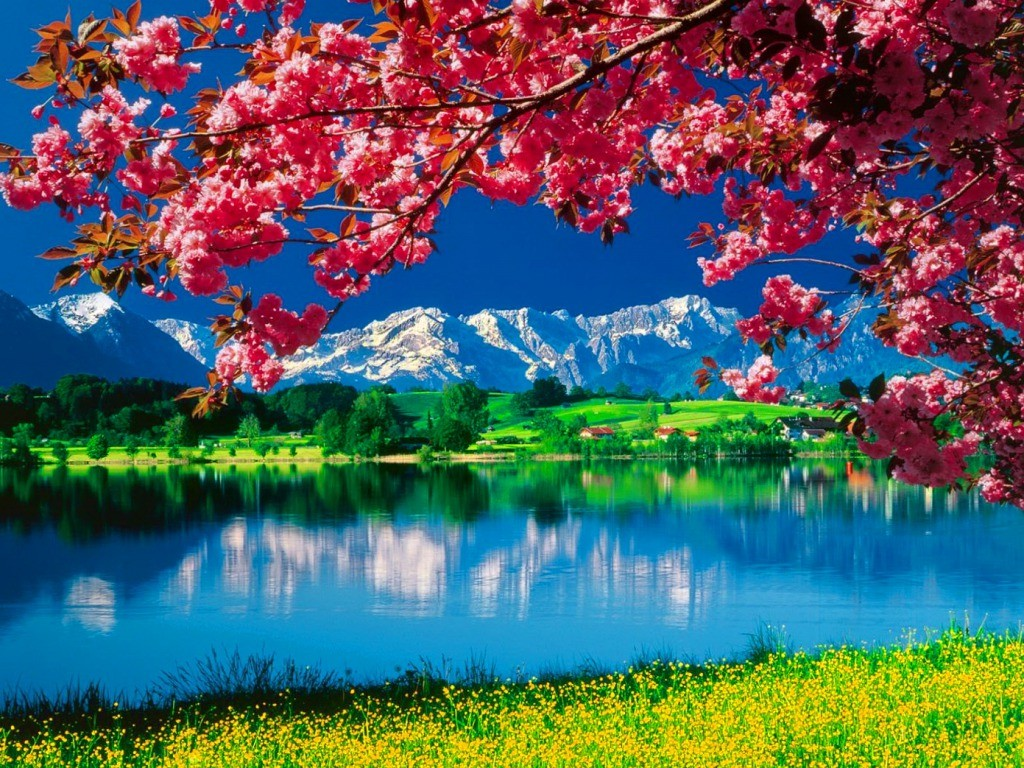 Beautiful Nature Love Wallpaper : Full HD beautiful 3d Nature Wallpapers beautiful Pictures