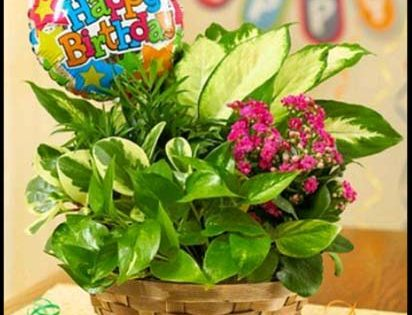 birthday wishes with flowers and name