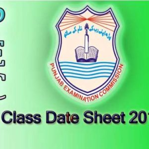Punjab Examination Commission 8th class date sheet 2018