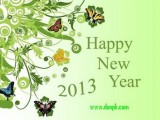 Happy New Year 2013 Best wishes to whom you loved ones.