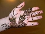 Mehndi Designs 2013 new fashion