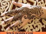 Mehndi Designs Pakistan Art
