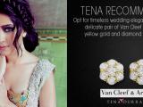 Beautiful Pakistani Wedding Dresses Collection 2013-2014 By Tena Durrani 01