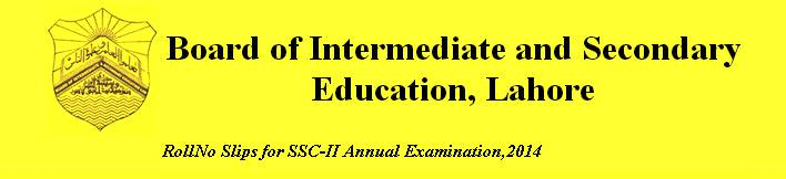 Bise Lahore 10th Class (SSC-2) Online Roll No Slips Annual Examination 2014
