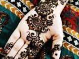 Henna Mehndi For Festival 2014