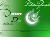 pakistan flag defence day 2014