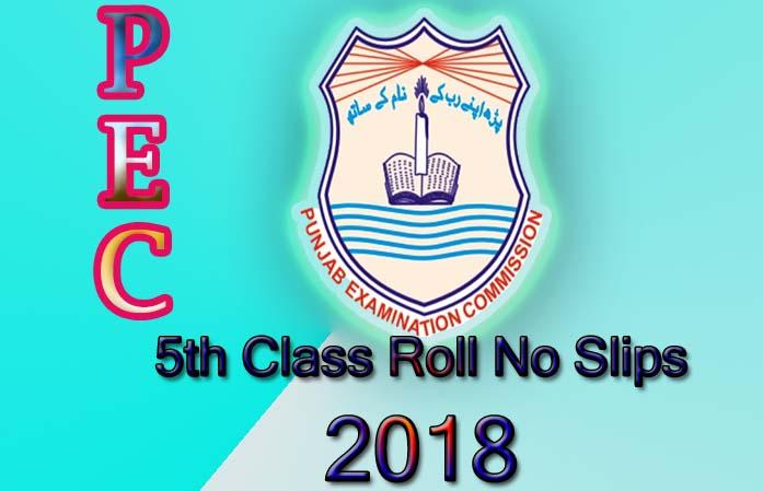 Online PEC 5th Class Roll No slips 2018