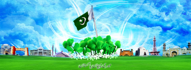 14 August Beautiful Pakistan Flag Profile Cover
