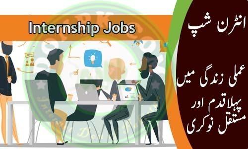 Government Jobs Internships In Pakistan