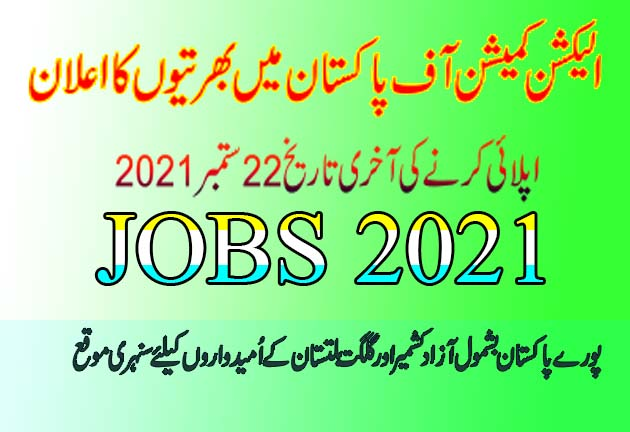 ECP Project Director manager deputy manager Jobs 2021